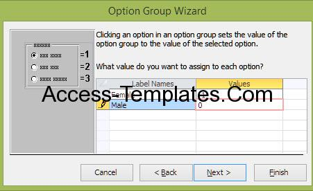 Access Option Group Value 45